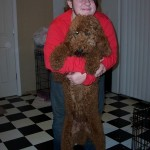 female red standard poodle
